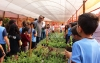 Prati-Sustainable Project to guide students on seedling cultivation and propagation
